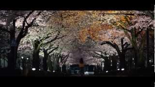 『桜並木の満開の下に』予告編
