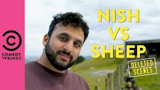 Nish vs Sheep