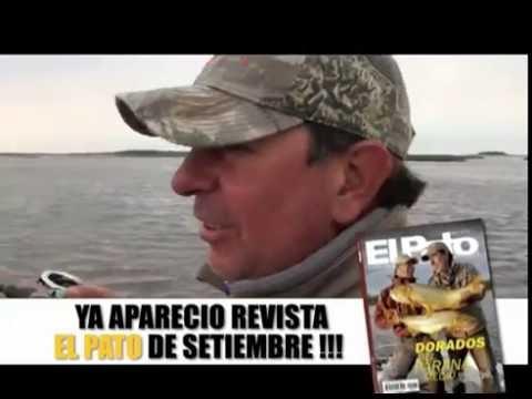 El Pato Televisión del 03 de septiembre de 2016