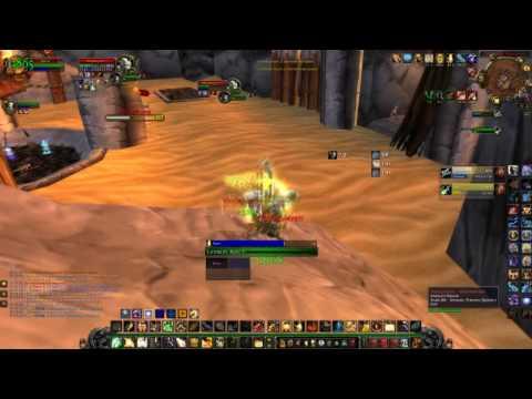 Holy Paladin and Enhancement Shaman 2v2 2500+