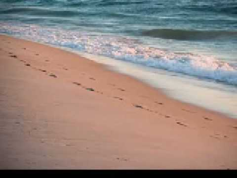 Footprints In The Sand - Edgel Groves (видео)