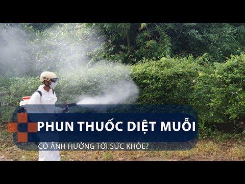 Phun thuốc diệt muỗi có ảnh hưởng tới sức khỏe? | VTC1 - Thời lượng: 91 giây.