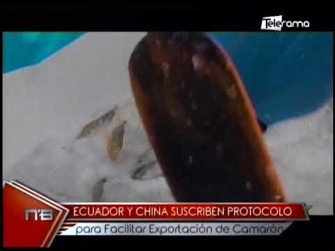 Ecuador y China suscriben protocolo para facilitar exportación de camarón