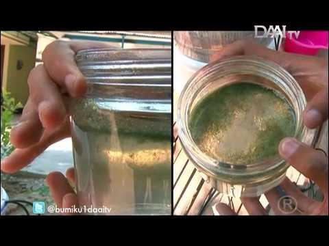 air wmv cara membuat alat penjernih air sederhana alat roll pipa