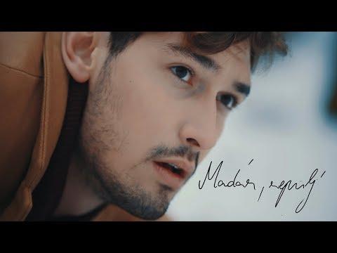 SzekÉr GergŐ MadÁr RepÜlj Official Music Video