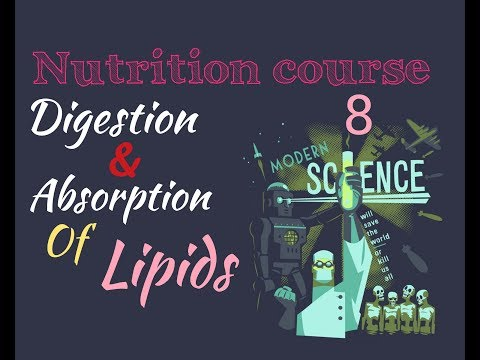 Biochemistry Nutrition course lecture ( 8 ) - Lipids digestion, absorption