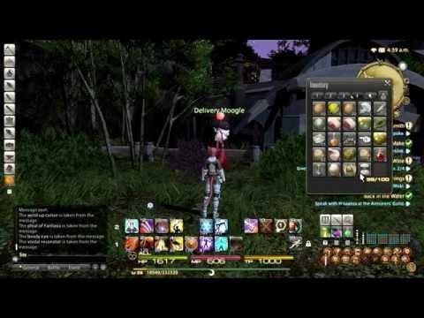 Final Fantasy XIV ARR Lightning Strikes celebration pt 2