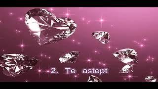 Download Lagu Teo Fechete vol 3 Te astept colaj Mp3