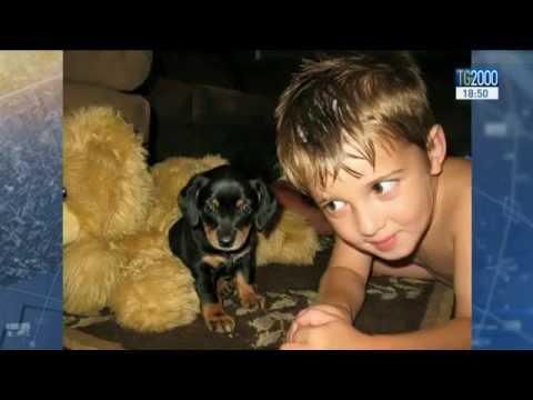 josh il bambino che ha commosso tutti amando un cane di nascosto