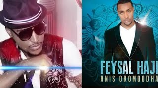 Hot New Ethiopian Music 2014 Feysal Haji - Bareeddu Arsii (Official Audio)