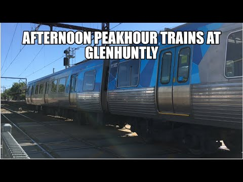 Afternoon Peakhour Trains at Glenhuntly