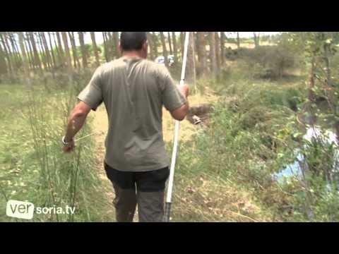 Pesca de Cangrejo I
