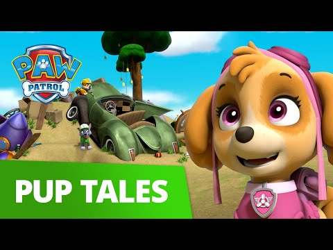 PAW Patrol | Pups Save Ace's Birthday Surprise | Rescue Episode | PAW Patrol Official & Friends!