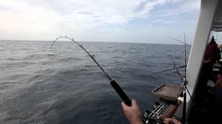 Bottom fishing with bait [VIDEO]