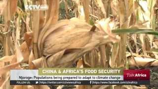 China Africa Agriculture Co operation