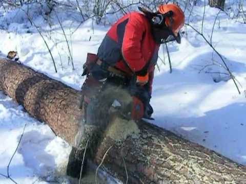 Hitachi: how to cut a tree