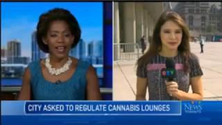 CTV News  - Toronto Cannabis Louge Hearing by Pot TV