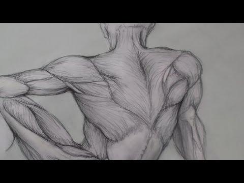Drawing Human Anatomy Giovanni Civardi 9780289800898