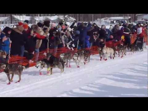 Lance Mackey- Iditarod Start 2013