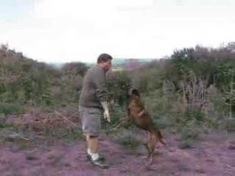 dog training - Here's an easy method that you can use to stop your dog from jumping on friends and family. Don't forget to rate this video, leave comments and subscribe to ...