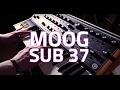 Moog Sub 37 Tribute Edition Paraphonic Synthesizer Demo