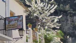 Motril Spain  City pictures : Port of Motril, Spain - (Villages of Las Alpujarras)