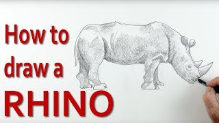 In this art tutorial I am going to show you how to draw a rhino step by step starting from very simple shapes. I'll take you through  how to draw the shapes, measure the length of the legs and how to get the basic proportion correct. Once the basic shape is right I'll teach you how to draw the outline, to show the folds of skin on the rhino. Finally, you will learn how to add light and shade to make the rhino look convincing. I also explain how to get rid of the outline to create an edge so that the drawing looks like a three dimensional animal.This video is designed for children, beginners and those learning to draw.Check out: http://www.art-tutorialsonline.com for more videos
