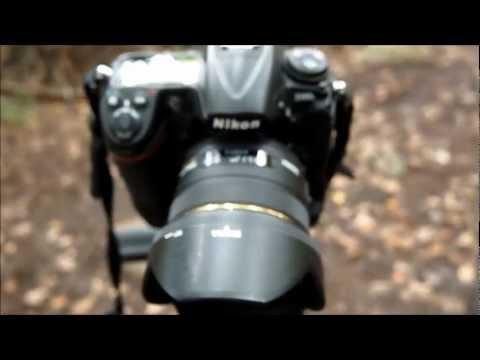 SIGMA 50mm 1.4 DG HSM EX LENS autofocus speed test in low light