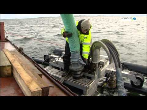 A film about mussel harvest in Åland