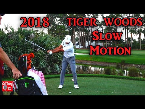 2018 TIGER WOODS SLOW MOTION FACE O …
