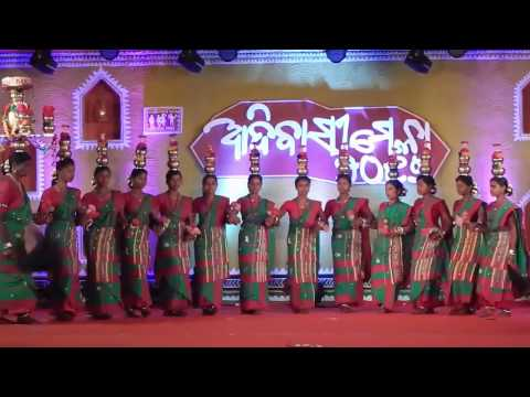Video New Santali Traditional Dance Performance at ADIVASI MELA 2017 BHUBANESWAR download in MP3, 3GP, MP4, WEBM, AVI, FLV January 2017
