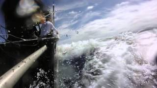 Tutukaka New Zealand  city pictures gallery : Stripe Marlin off Tutukaka New Zealand Team YEEHAA