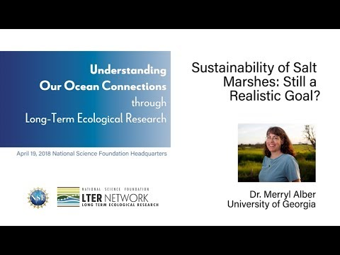 NSF-LTER 2018 Symposium - Merryl Alber: Is Sustainability of Salt Marshes Still a Realistic Goal?
