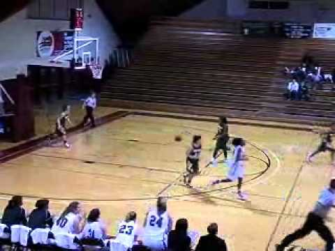 Women's Basketball vs. Hollins 1/4/11 Highlights