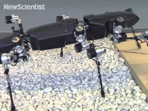steps - Full story: http://bit.ly/1wZC0QW A six-legged robot capable of moving its legs independently can walk over obstacles and through rough terrains.