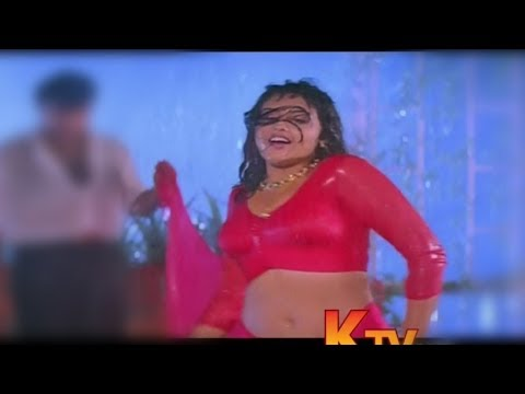 Meena sexy boob's and butt in wet saree's