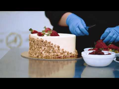 safirmo xilis torti