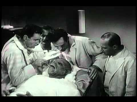 The Creature Walks Among Us (1956) - Trailer 1