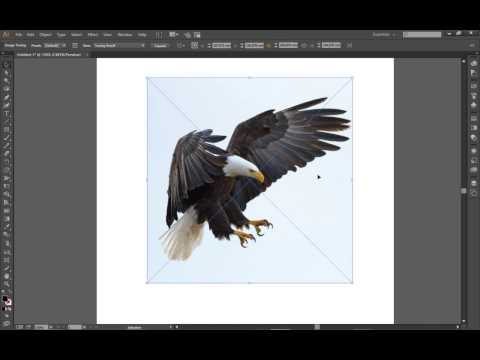 Image Trace In Adobe Illustrator CC