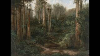 Sassafras Gully Australia  city photos : 20 170532 - Isaac Whitehead 'A Sassafras gully, Gippsland' c. 1870