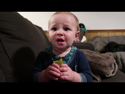 Baby Tries Pickle First Time He Hates It But Can t Stop