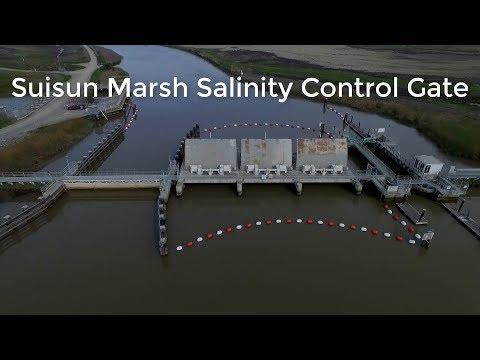 Suisun Marsh Salinity Control Gate