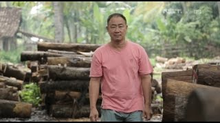 Video Kegigihan Pengusaha Bambang Haryono untuk Merubah Ekonomi di Banyuwangi - Lentera Indonesia MP3, 3GP, MP4, WEBM, AVI, FLV Mei 2018