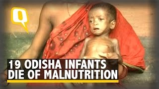 Jajpur India  City new picture : The Quint: 19 Children Die of Malnutrition in Odisha Village