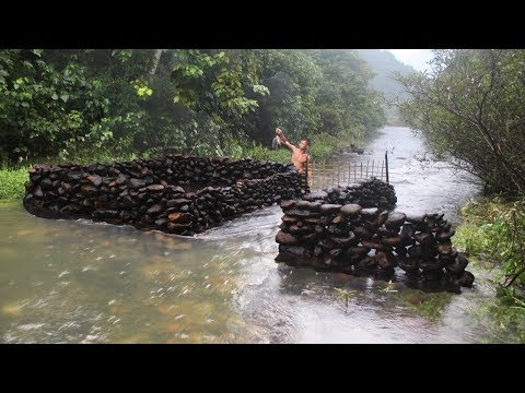 Primitive Technology: Build a Stone Dam to Catch and Raise Fish - Thời lượng: 10 phút.