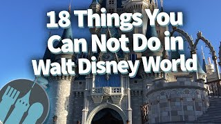 Video 18 Things That Had To Be BANNED In Disney World! MP3, 3GP, MP4, WEBM, AVI, FLV Juni 2019