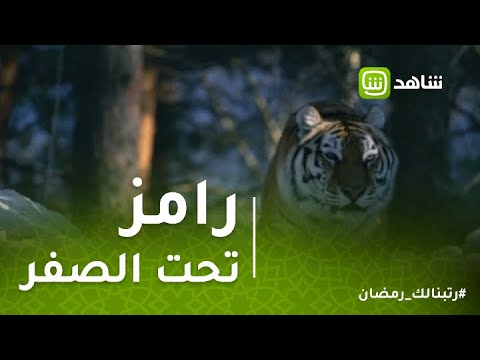 """عبد الناصر زيدان يهرب من نمر """"رامز تحت الصفر"""""""