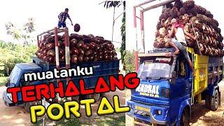 Video Truck sawit RIAU nyangkut portal MP3, 3GP, MP4, WEBM, AVI, FLV Januari 2019