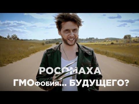 ВЫЖИТЬ в мире ГМОфобии - DomaVideo.Ru