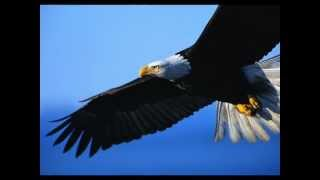 Third Day Eagles-One Of The Best Songs/Hymns You Will Ever Hear-YouTube.com